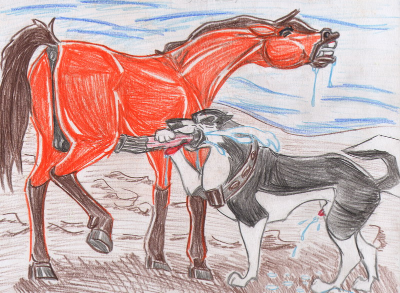 delights feral couples: stallion Naruto and rosario vampire fanfiction