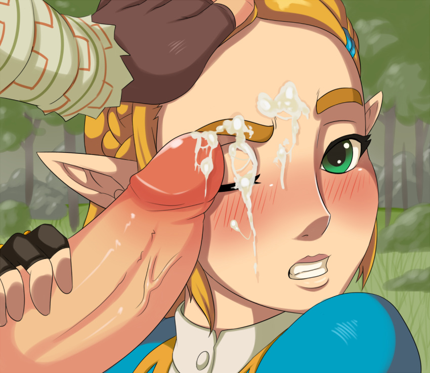 fairy wild locations legend the the breath of of great zelda Yu-gi-oh dark magician girl