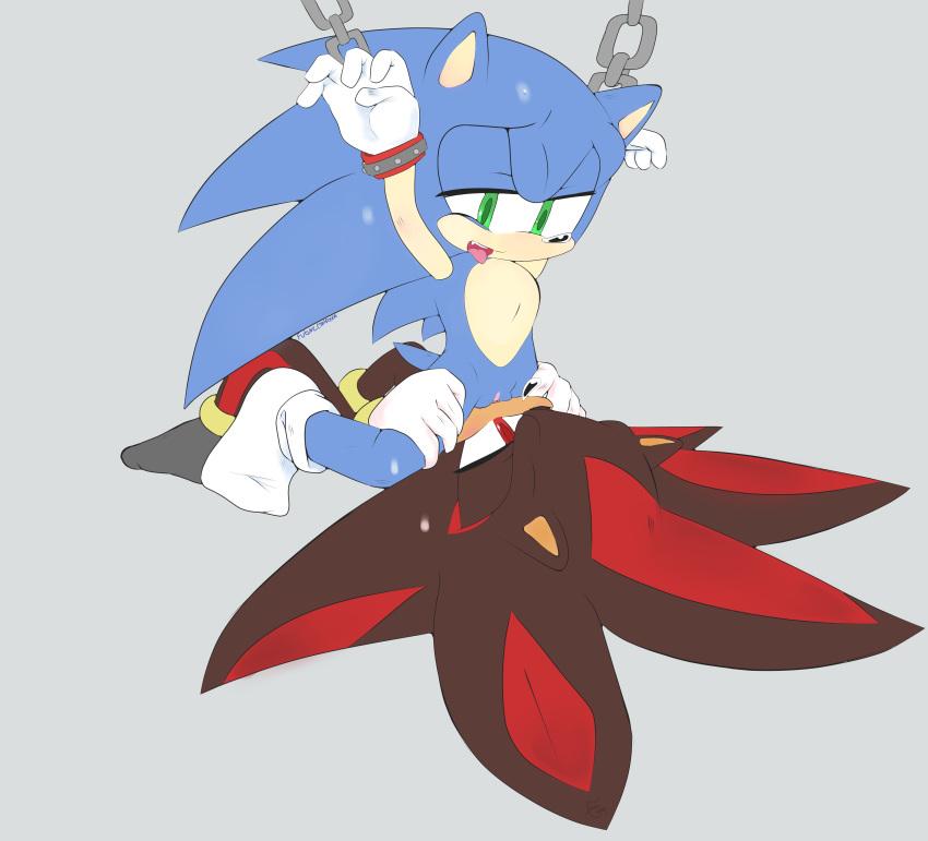 the werehog sonic shadow werehog vs the Felix from re:zero