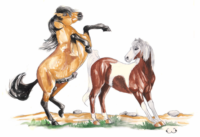of stallion spirit rain the cimarron Breath of fire 4 ursula